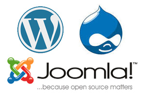 Web Design CMS