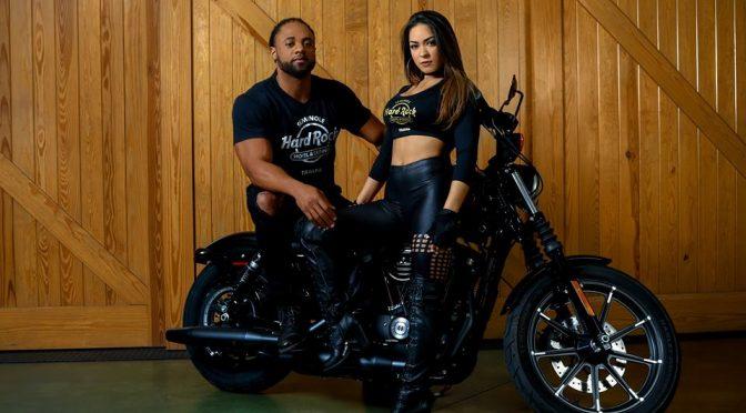 2017 Harley Sportster Iron 883 Hd