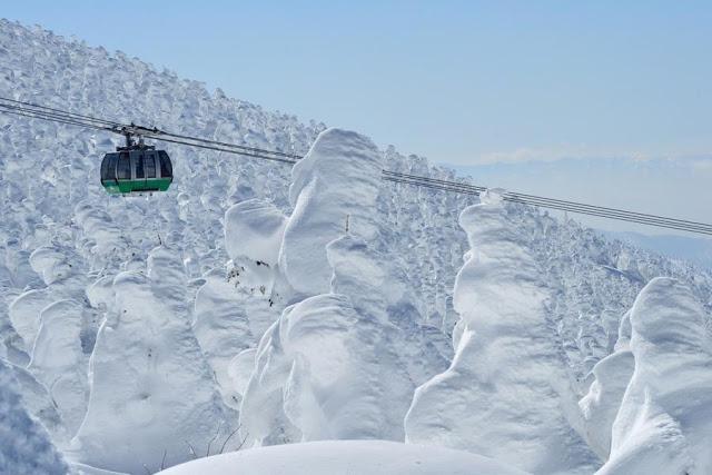 日本東北樹冰 | 東南旅遊