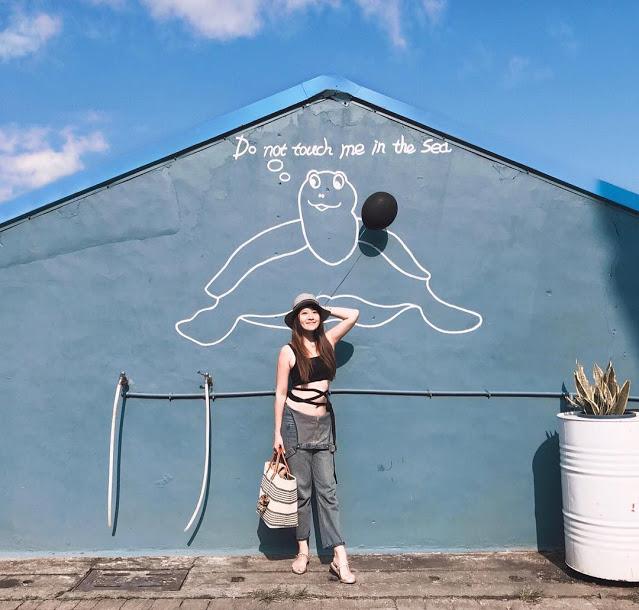 小琉球景點海龜牆|東南旅遊