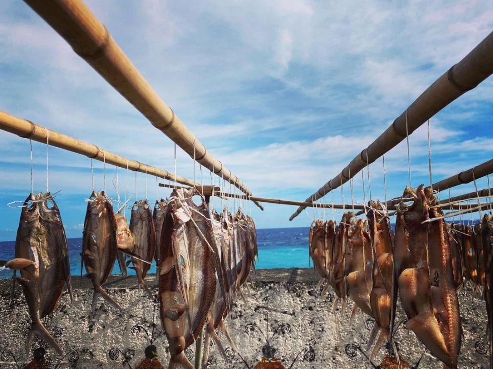蘭嶼飛魚|東南旅遊