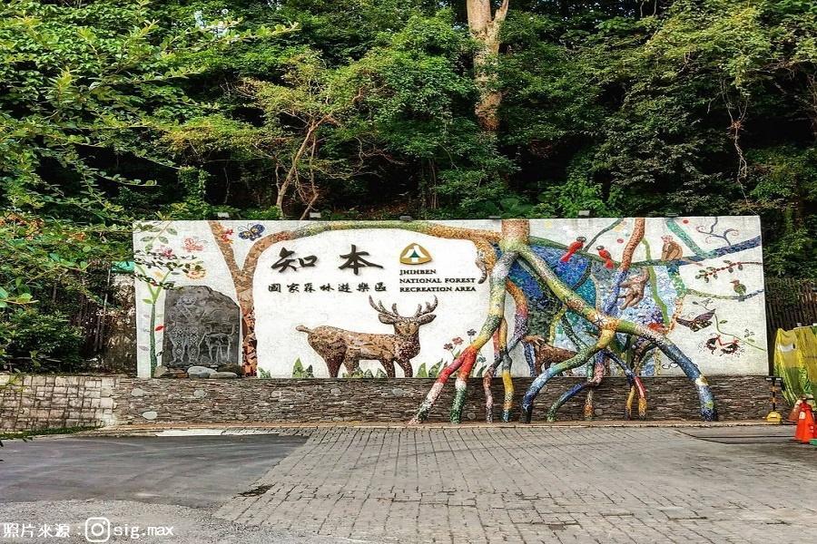 ▲知本森林遊樂區(圖/東南旅遊提供 @sig.max)