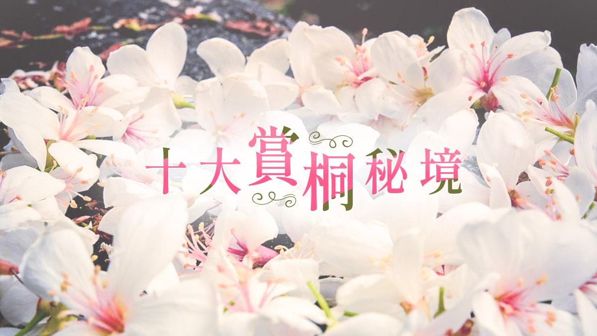 十大賞桐秘境Banner|東南旅遊