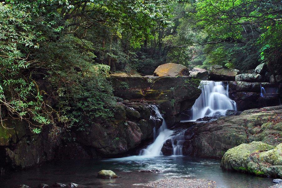 滿月圓國家森林遊樂區|東南旅遊