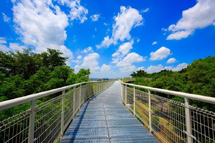 八卦山天空步道 | 東南旅遊