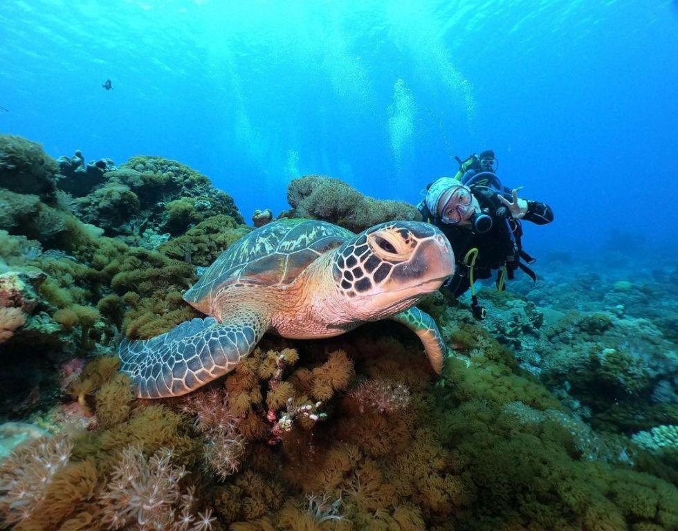 綠島石朗淺水 東南旅遊