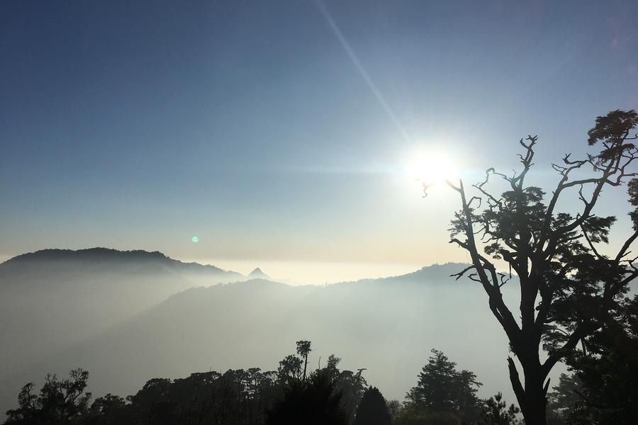 大雪山國家森林遊樂區|東南旅遊