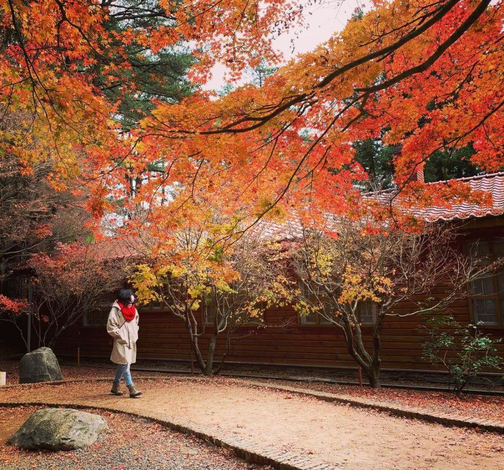 福壽山松廬|東南旅遊