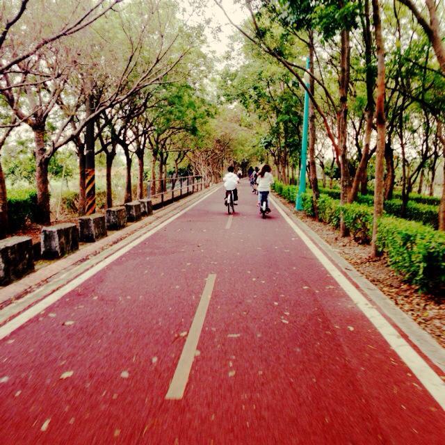后豐鐵馬道|東南旅遊