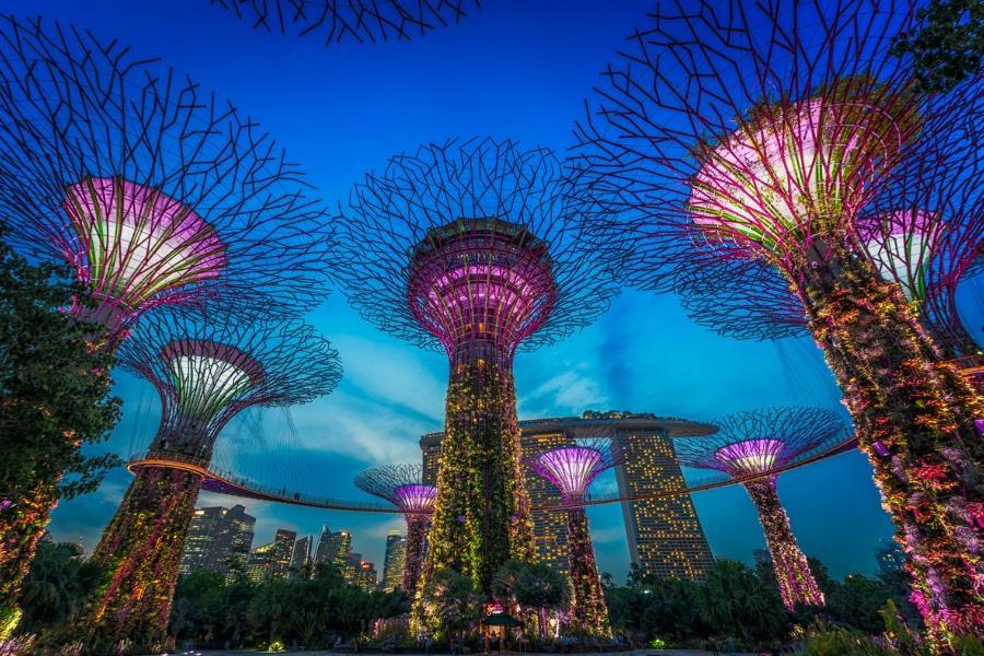 瘋狂亞洲富豪:新加坡濱海灣花園|東南旅遊