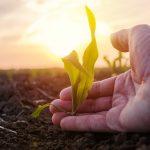 La biodiversité en péril : des changements profonds et immédiats sont nécessaires !