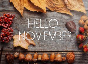 Les essentiels de novembre