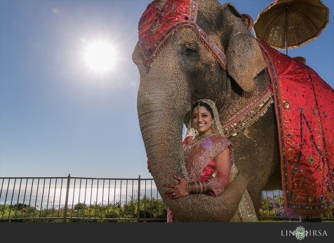 The Ritz-Carlton is one of a few properties in Orange County that allows an elephant for the baraat