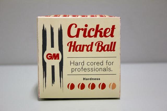 GM Cricket (4)