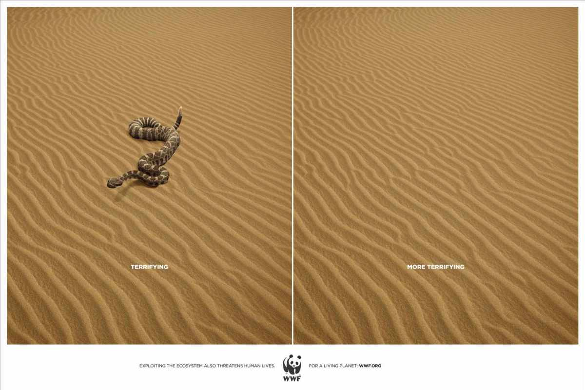 wwf-_animals_snake