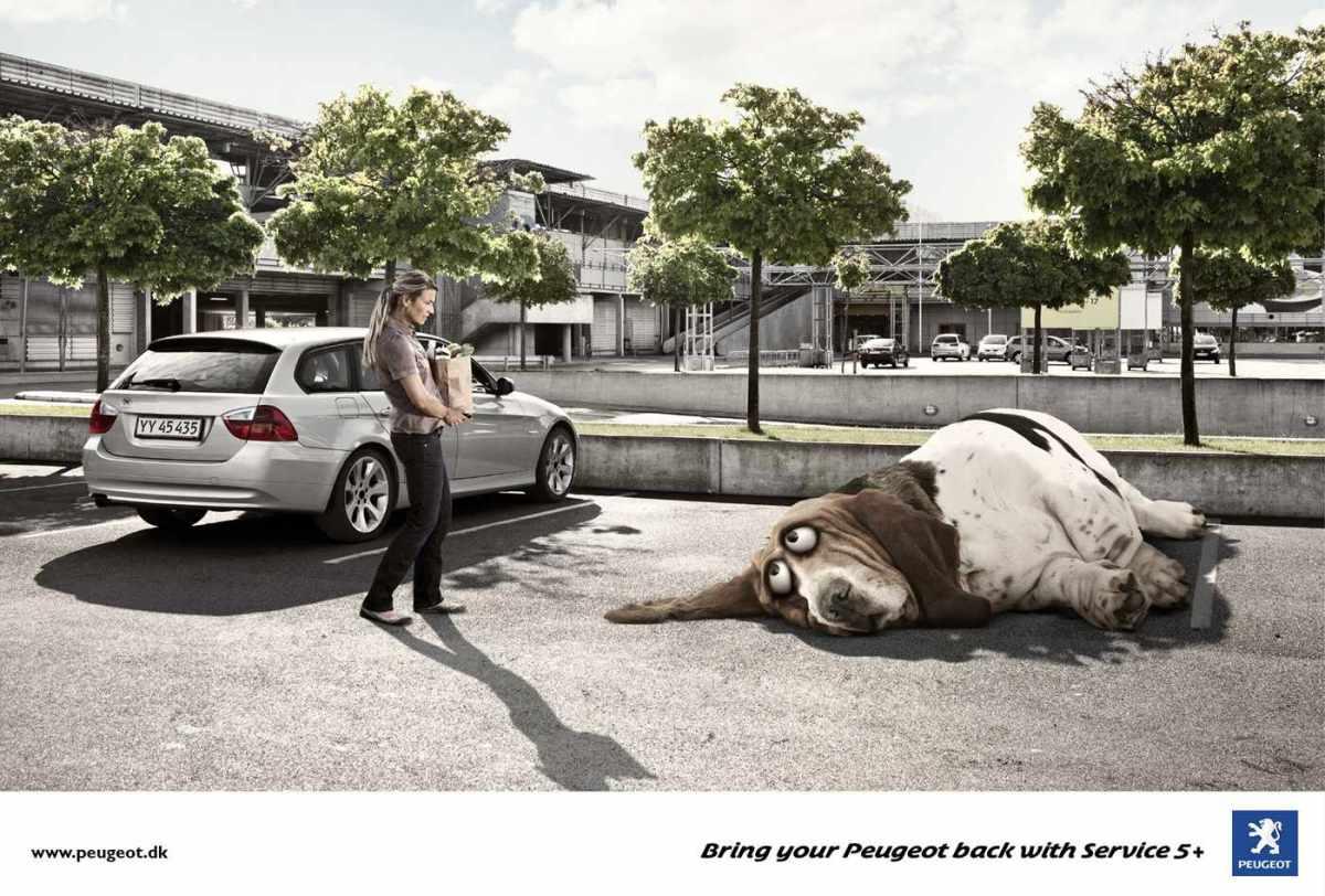 Peugeot_Tired-Dog_2