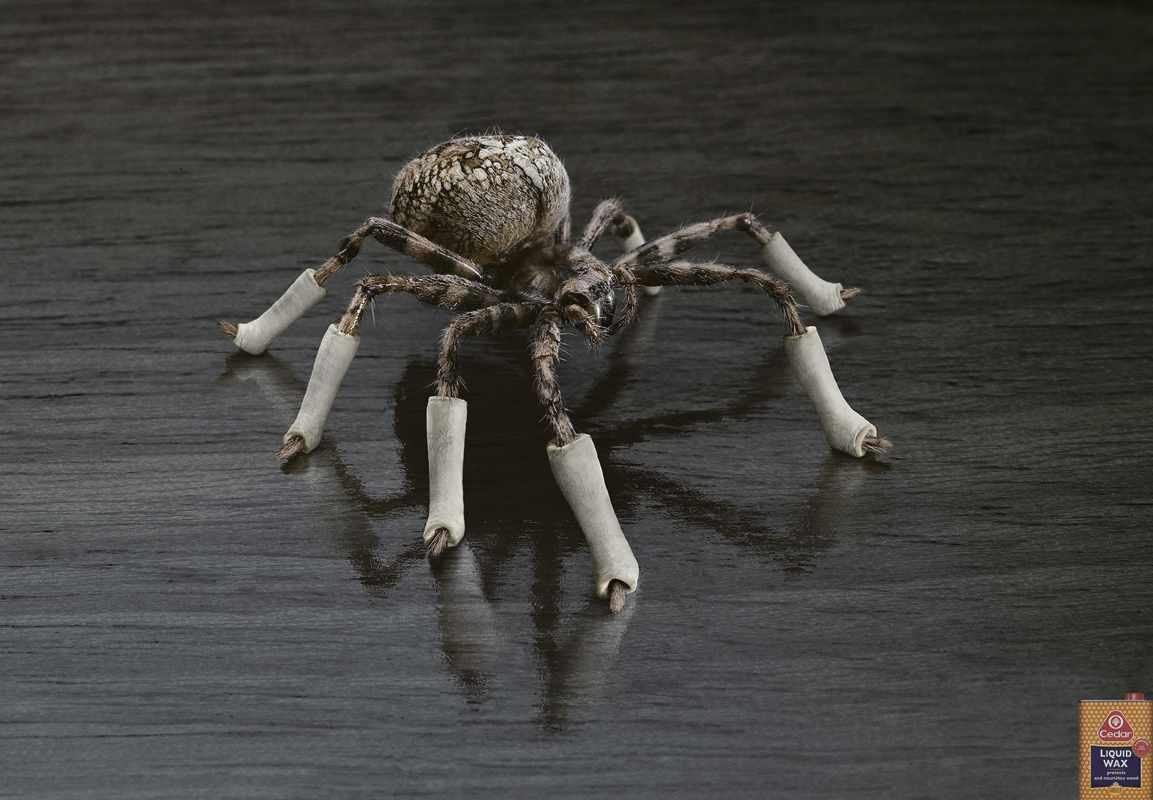 SpiderUKadoftheworld
