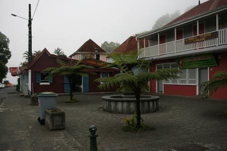 Ile de la Réunion - janvier 2011 - 595