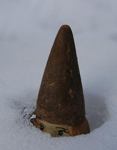 Lutin des neiges - 1