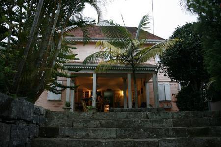 Ile de la Réunion - janvier 2011 - 596