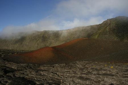 Ile de la Réunion - janvier 2011 - 255