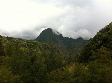Ile de la Réunion - janvier 2011 - 647