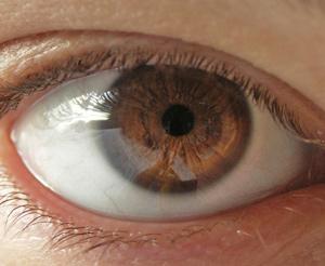 Eyecatcher: Worauf achten Kunden in Onlineshops?