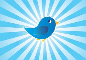 Twitter führt Kauf-Button ein: Potential für Händler?