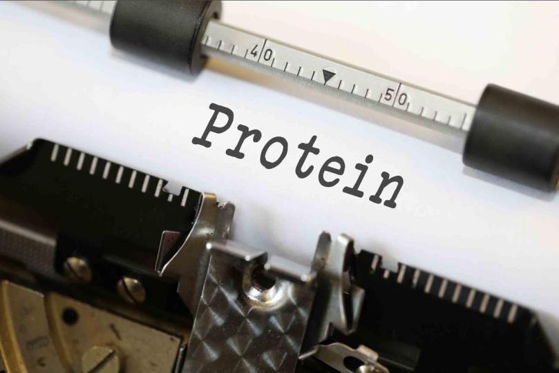 proteina escrito