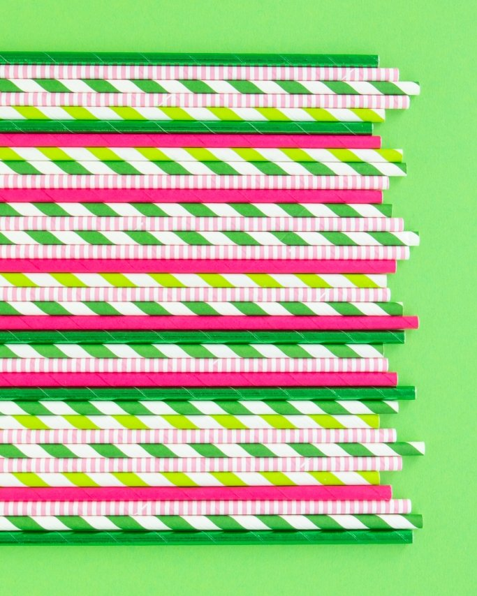Cactus Party Paper Straws assortment on green background