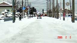 snow225.jpg