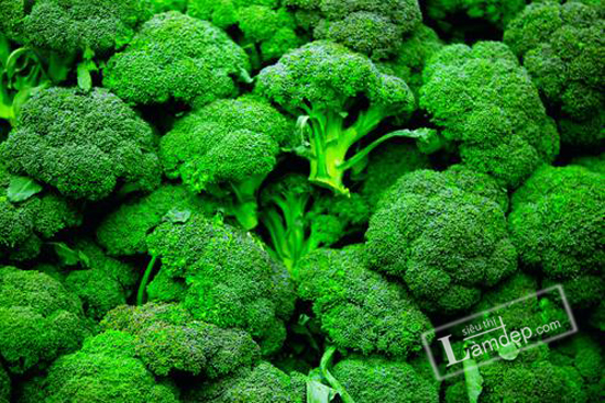 Broccoli (Brassica oleracea var. italica) is a member of the mustard family and is closely related to the cauliflower. --- Image by © Seth Resnick/Science Faction/Corbis