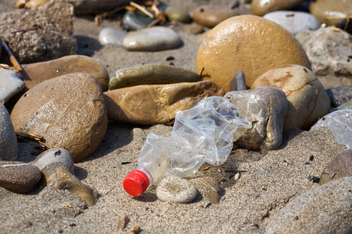 Why live a plastic-free life?