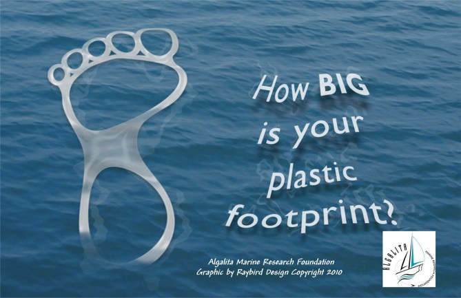 How Big is Your plastic Footprint