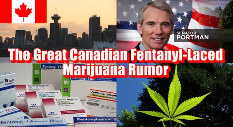 Marijuana al fentanyl