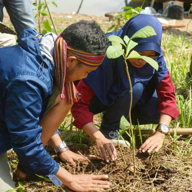 earth day, earth day 2016, plant a tree