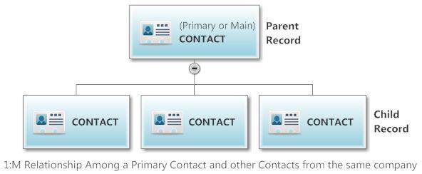 Contact Heirarchy1