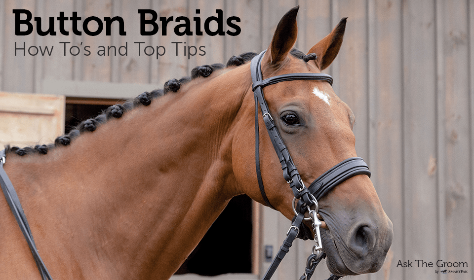 Button Braids How Tos And Top Tips SmartPak Blog