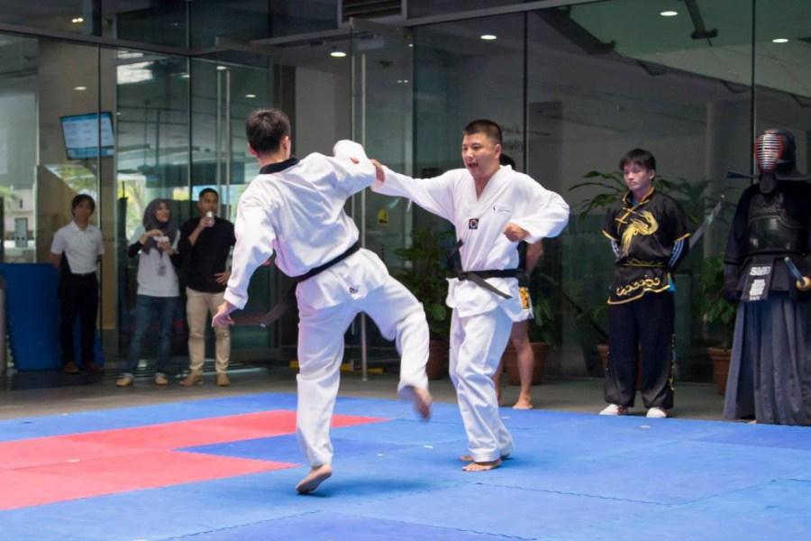 Taekwondo at VIVACE 2015