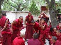 Sera Monastery Debating