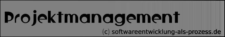 Anmerkungen zum Projektmanagement
