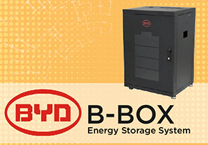 BYD BATTERY LAUNCH EVENT
