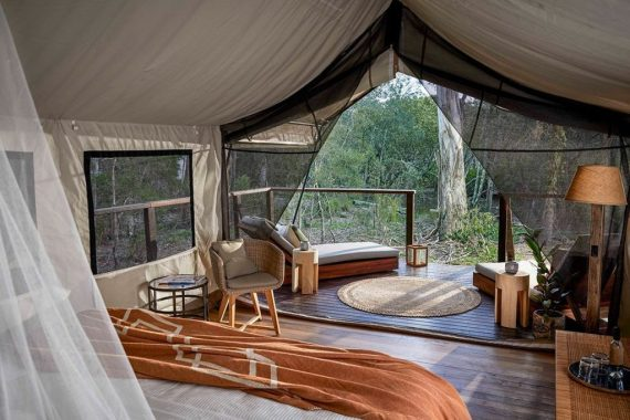 Deluxe Safari Tent, Paperbark Camp