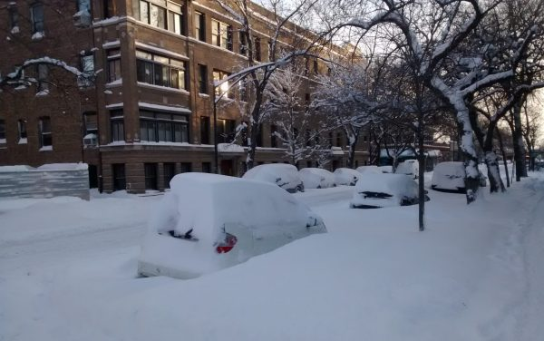 chicago winter parking