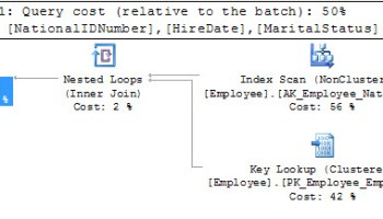 SQL SERVER - Difference Between Index Scan and Index Seek klseek1