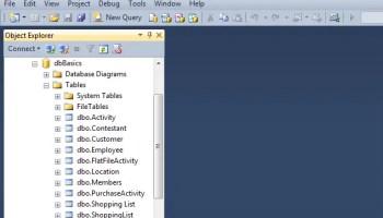 SQL SERVER - SQL Basics: Using Management Studio - Day 5 of 10 j2pbasics-6-1