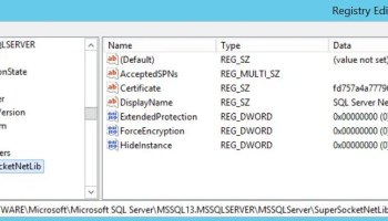 SQL SERVER - Unable to Start SQL Server - TDSSNIClient Initialization Failed with Error 0x2, Status Code 0x38 sql-cert