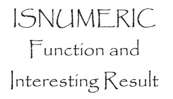 SQL SERVER - UDF - Validate Integer Function isnumericfunction