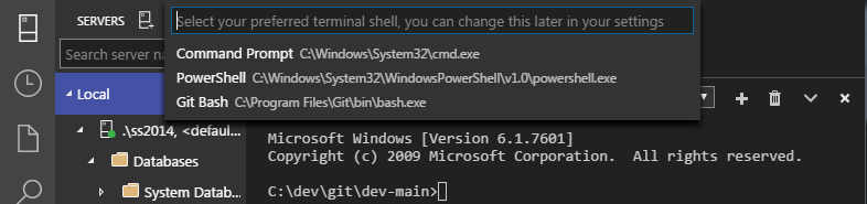 SQL Operations Studio - Terminal - default shell 02