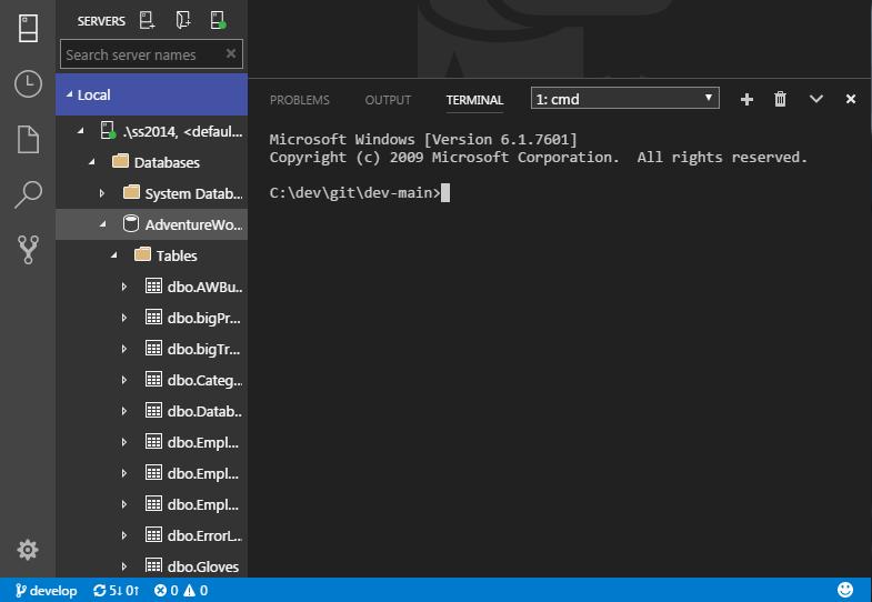 SQL Operations Studio - Terminal